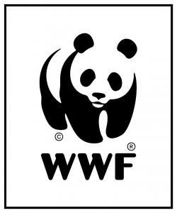 WWF logo_key frame_whitebackground_72ppi